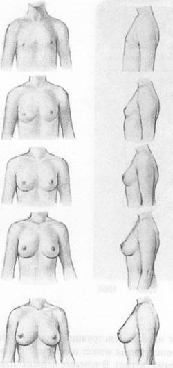 Секс позы пользующиеся огромным спросом с фото