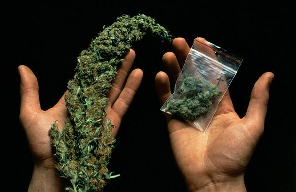 Фото курение марихуаны марихуана символами