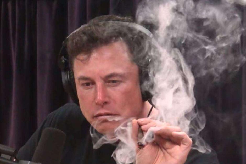 семена марихуаны легальны