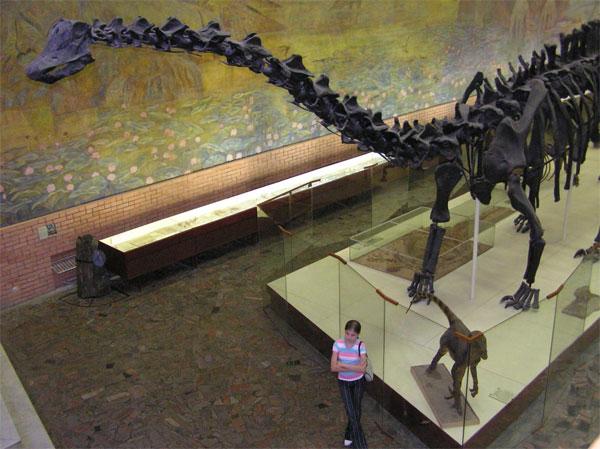 Обоб�ение в�е� и��ледованиий динозав�ов